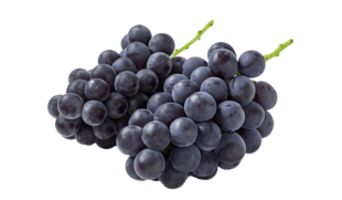 Uva con semi Palieri