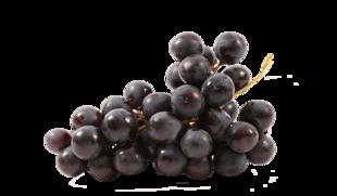 Uva con semi Black Pearl